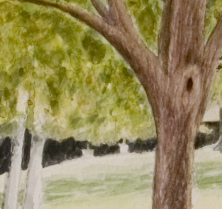 Original Watercolor Painting Close Up