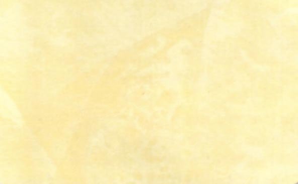 Behr venetian plaster color chart picture images frompo